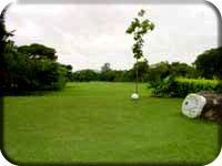 Popa Golf Club 3