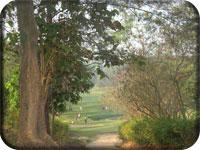 Yangon Golf Club picture 3